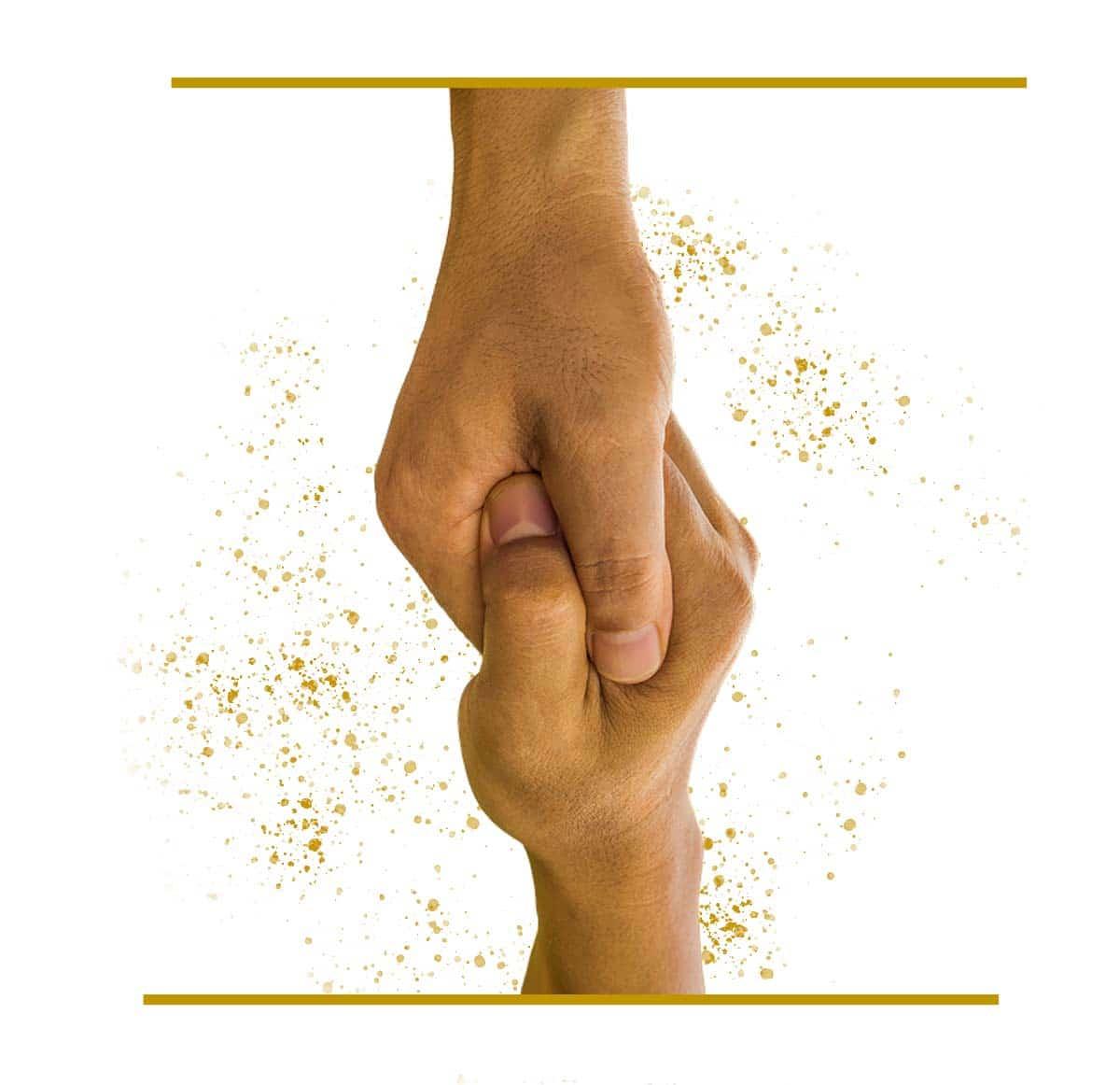 Partnerprogramm